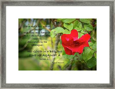 Fine Up Against A Wall Framed Print by Mary Lee Dereske
