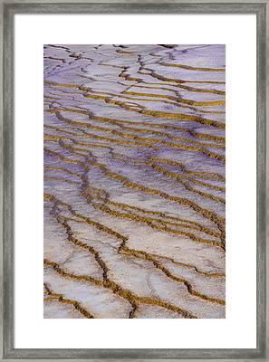 Fingerprint Of The Earth Framed Print