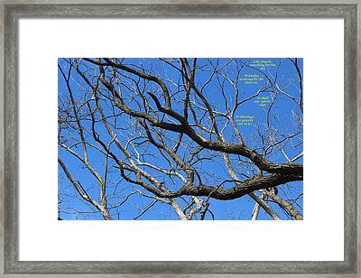 Fingers To The Sky Framed Print by Cliff Ball