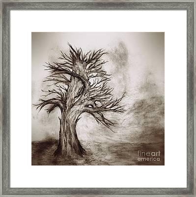Finis 3 Framed Print by John Krakora