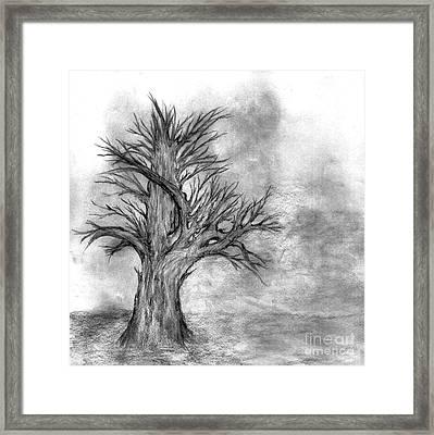 Finis Framed Print by John Krakora