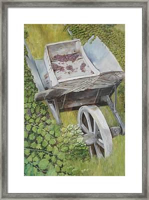 Finished Harvest Framed Print