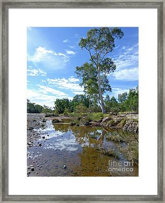 Finke River - Northern Territory Framed Print by Phil Banks
