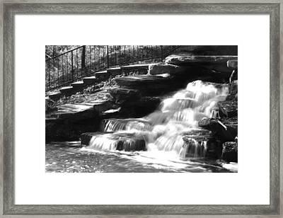 Finlay Park 124 Bw Framed Print