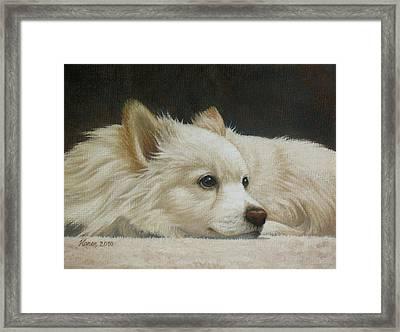 Finley Framed Print by Karen Coombes