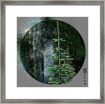 Fir Trees - 3 Ages Framed Print
