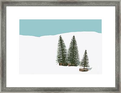 Fir Trees In The Snow Framed Print by Wolf Kettler