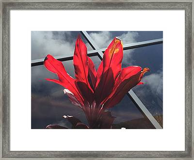 Fire And Ice Framed Print by Russell Keating