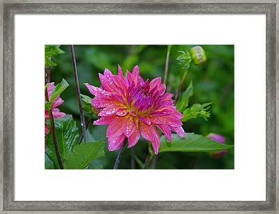 Fire And Rain  Framed Print by Jeff Swan