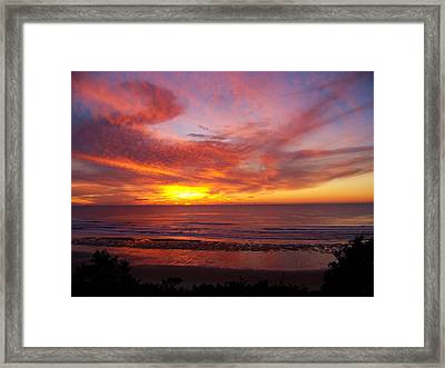 Fire Breathing Dragon Framed Print