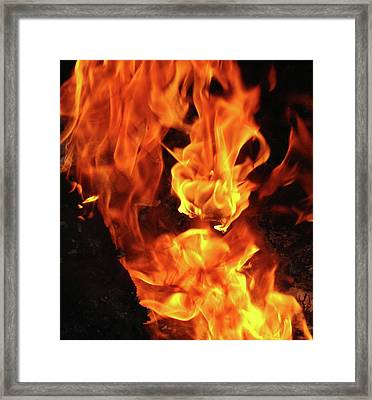 Framed Print featuring the photograph Fire Dragon by Lynda Dawson-Youngclaus