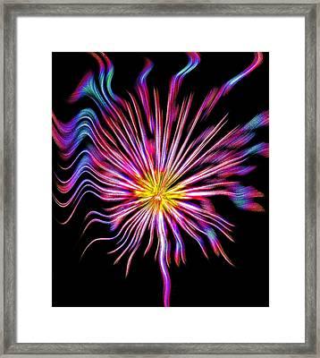 Fire Flower Abstract Framed Print by Steve Ohlsen