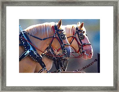 Fire Horses Framed Print