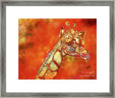 Fire In Africa Framed Print by David Millenheft