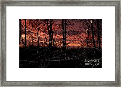Fire In The Sky Framed Print by Robert Sander