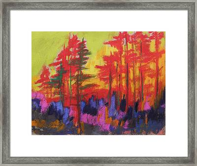 Fire In The Trees Framed Print by John Williams