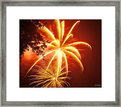 Fire In The Trees Framed Print by Phill Doherty