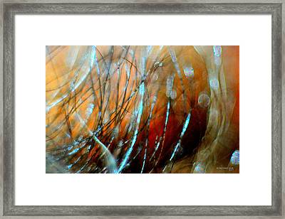 Fire In The Wind Framed Print by JCYoung MacroXscape