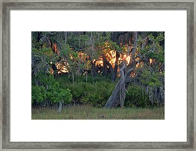 Framed Print featuring the photograph Fire Light Jekyll Island 02 by Bruce Gourley