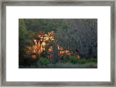 Framed Print featuring the photograph Fire Light Jekyll Island 03 by Bruce Gourley