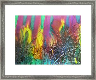 Fire Mishap Framed Print by Susan Parsley
