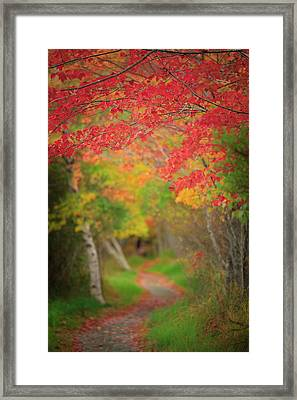 Framed Print featuring the photograph Fire Red Path  by Emmanuel Panagiotakis
