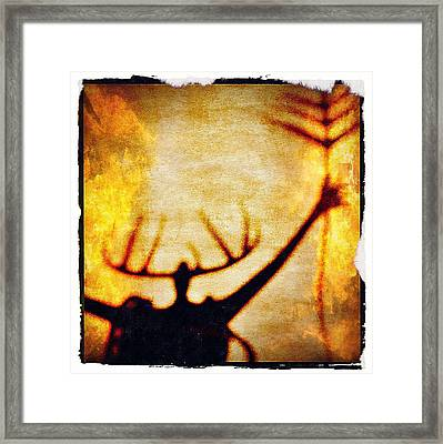 Fire Shaman Framed Print