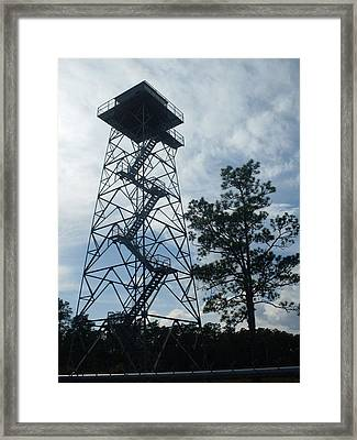 Fire Tower In The Forest Framed Print by Warren Thompson