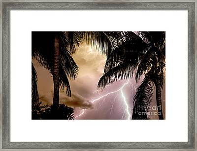 Fire Under The Palms Framed Print by Jon Neidert