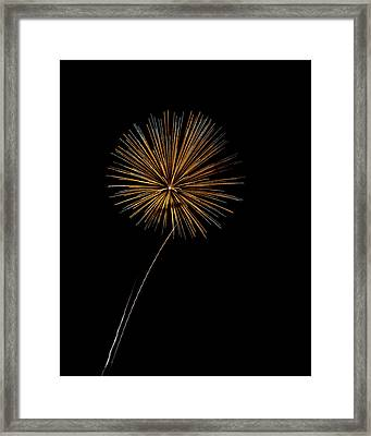 Fire Works Bursts Framed Print by Gary Langley