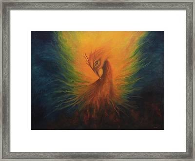 Firebird Framed Print by Marina Petro