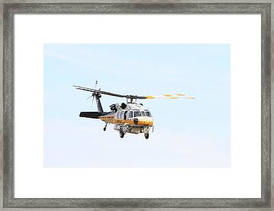 Firehawk In Flight Framed Print