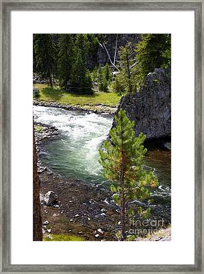 Firehole Fin Framed Print by Marty Koch