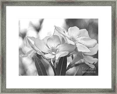 Framed Print featuring the photograph Firewalker Sw1 by Wilhelm Hufnagl
