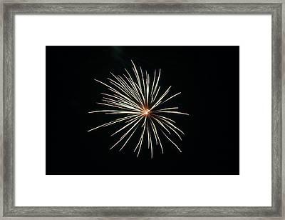 Fireworks 002 Framed Print by Larry Ward