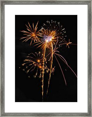 Fireworks 2 Framed Print by Michael Peychich
