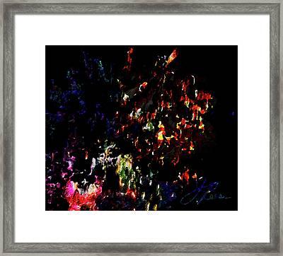 Fireworks 5 Framed Print by Joan Reese
