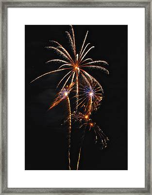 Fireworks 5 Framed Print by Michael Peychich