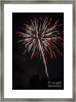 Fireworks Flower Framed Print