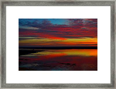 Fireworks From Nature Framed Print