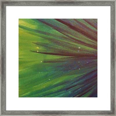 Fireworks IIi Framed Print by Anna Villarreal Garbis
