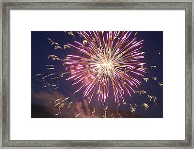 Framed Print featuring the digital art Fireworks In The Park 2 by Gary Baird