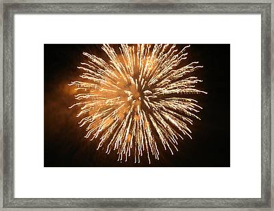 Framed Print featuring the digital art Fireworks In The Park 5 by Gary Baird