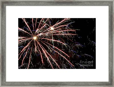 Fireworks Spectacular Framed Print by Terry Weaver