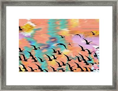 Firey Skies Framed Print by Bill Cannon