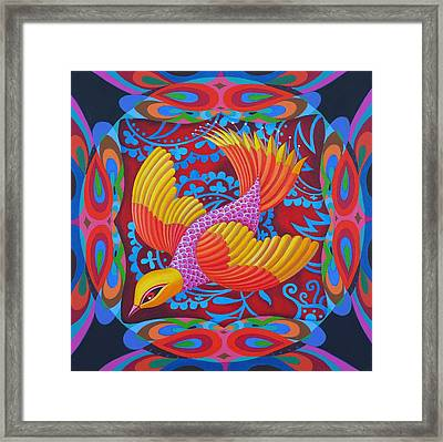Firey-tailed Flier Framed Print by Jane Tattersfield
