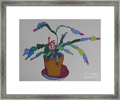First Bloom Christmas Cactus Framed Print by James SheppardIII