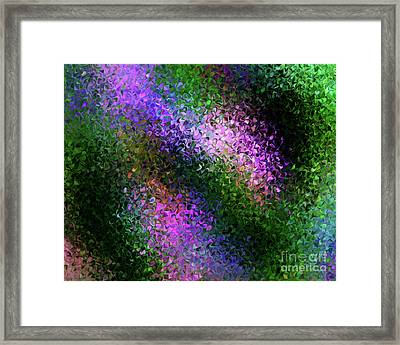 First Bloom Framed Print by Terril Heilman