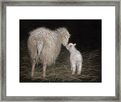 First Born Framed Print by Terry Kirkland Cook