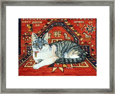 First Carpet Cat Patch Framed Print by Ditz